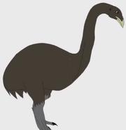 Giant-moa-100-prehistoric-beasts