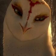 Nyra (Legend of the Guardians - The Owls of Ga'Hoole)