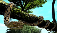 Reticulated-python-zootycoon3