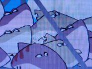 Stanley Bigeye Sand Tiger Shark