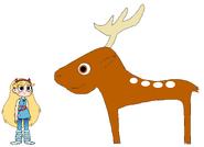 Star meets Fallow Deer