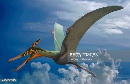 Ludodactylus