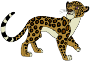 George as an African Leopard