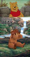 Winnie the Pooh Likes Brother Bear
