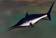 Black Marlin IC