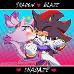 Blaze the Cat and Shadow the Hedgehog