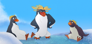 Macaroni Penguin TLG