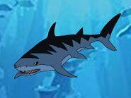 Rileys Adventures Tiger Shark