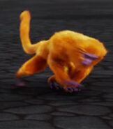 TarJan Golden Lion Tamarin
