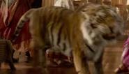 Aladdin 2019 Tiger