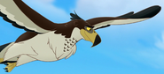 Hawk-Eagle TLG