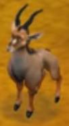 Sitatunga Safari Adventures