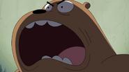 Grizz say ROAR!!!!