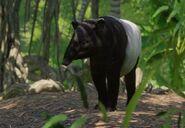 Malayan Tapir Planet Zoo