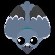 Mopeio Pigeon