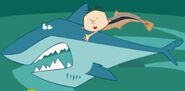 Stanley Blackspot Shark