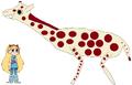 Star meets Reticulated Giraffe
