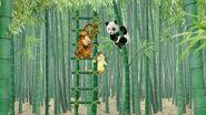 The Wonder Pets China