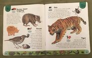 Deadly Creatures Dictionary (23)