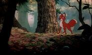 Fox-and-the-hound-disneyscreencaps.com-8067