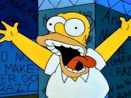 Homer is crazy.
