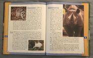 Scholastic Encyclopedia Of Animals (42)