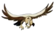 Vulture 1 hugo safari pc