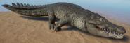 Crocodile, Saltwater (Planet Zoo)
