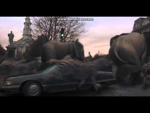 Rhinoceros, Elephants and Zebras