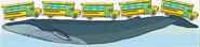 MSB Blue Whale