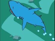 STNLY Thresher Shark