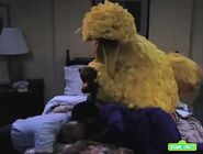 Big Bird sleeps with Gordon and Susan through the hurricane night