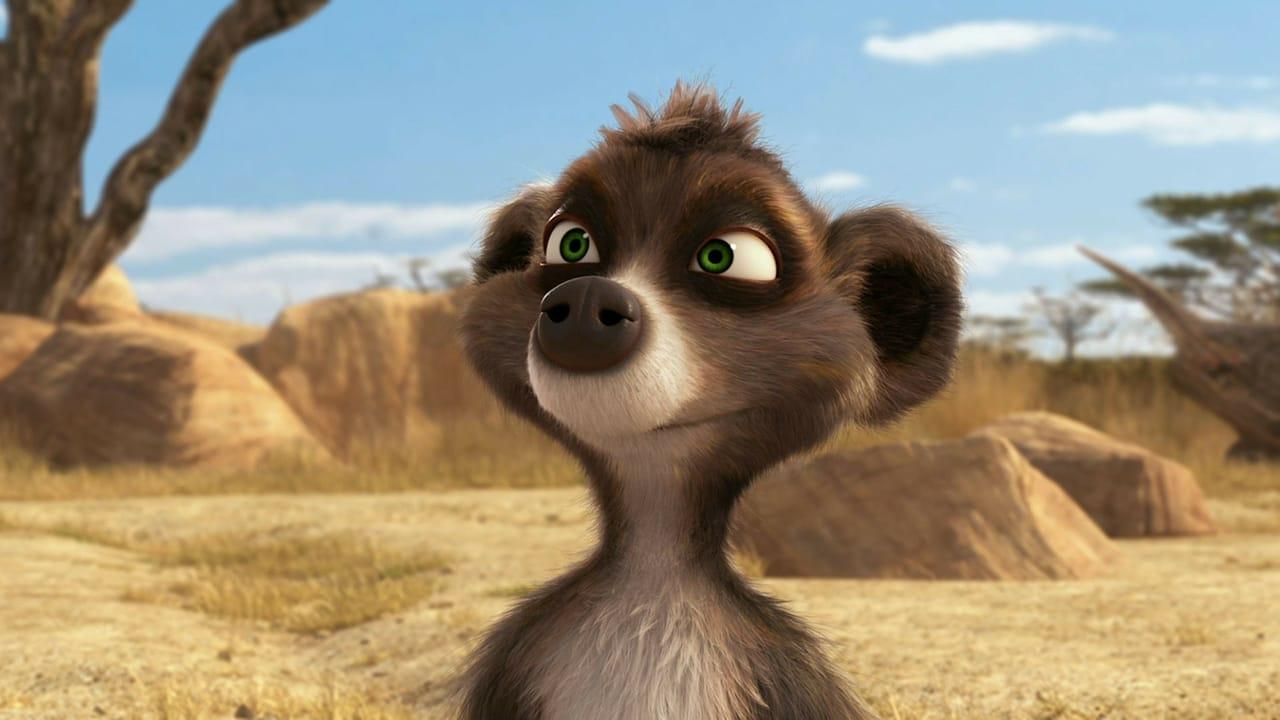 Billy the Meerkat