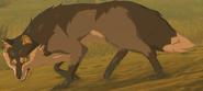 BotW Wasteland Coyote Model (1)