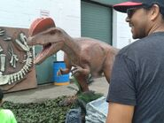 DinoStroll Dilophosaurus