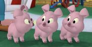 Mickey Mouse Clubhouse Pot-Bellied Pigs