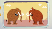 Silly Woolly Mammoths