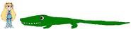 Star meets American Crocodile
