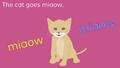 KidsTV Cat