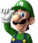 Luigi in Mario Kart DS
