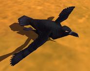 Raven IC