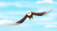 Yoohoo And Friends Bald Eagle