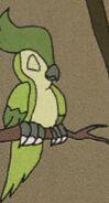 Green bird in volume15 rileysadventures