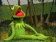 Kermit singing Bein Green on Sesame Street in the farm field