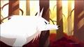 SJ Wolf