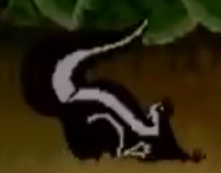 SMB Skunk.png