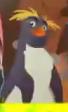 TLG Penguin