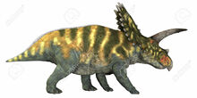 36372341-Coahuilaceratops-on-White-Coahuilaceratops-was-a-herbivore-that-lived-in-the-Cretaceous-Era-of-Mexic-Stock-Photo.jpg