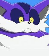 Big the Cat in Sonic X