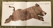 Can an Aardvark Bark? (5)